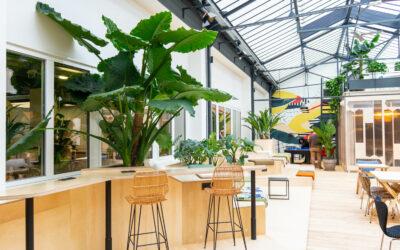 Végétaliser ses espaces de travail, et si c'était ça le green for good ?